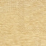 Ascot Oyster C026