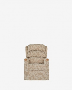Standard Lift and Tilt Chair in Fabric Standard Lift and Tilt Chair in Leather