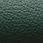 Dark Green 09489