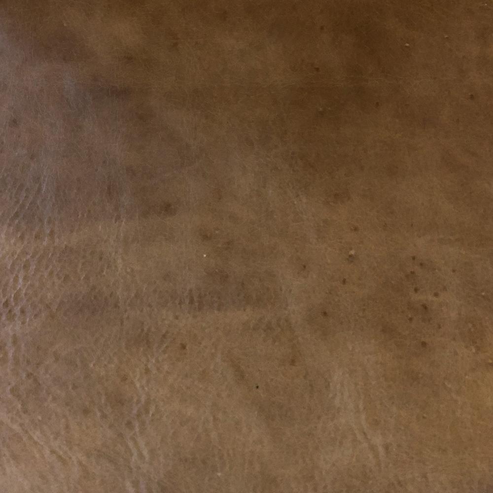 Indiana Tan